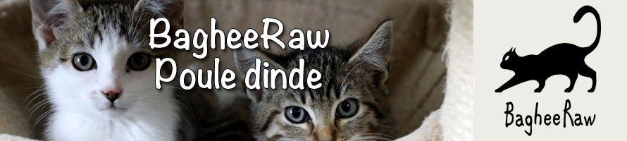 BagheeRaw pour chats